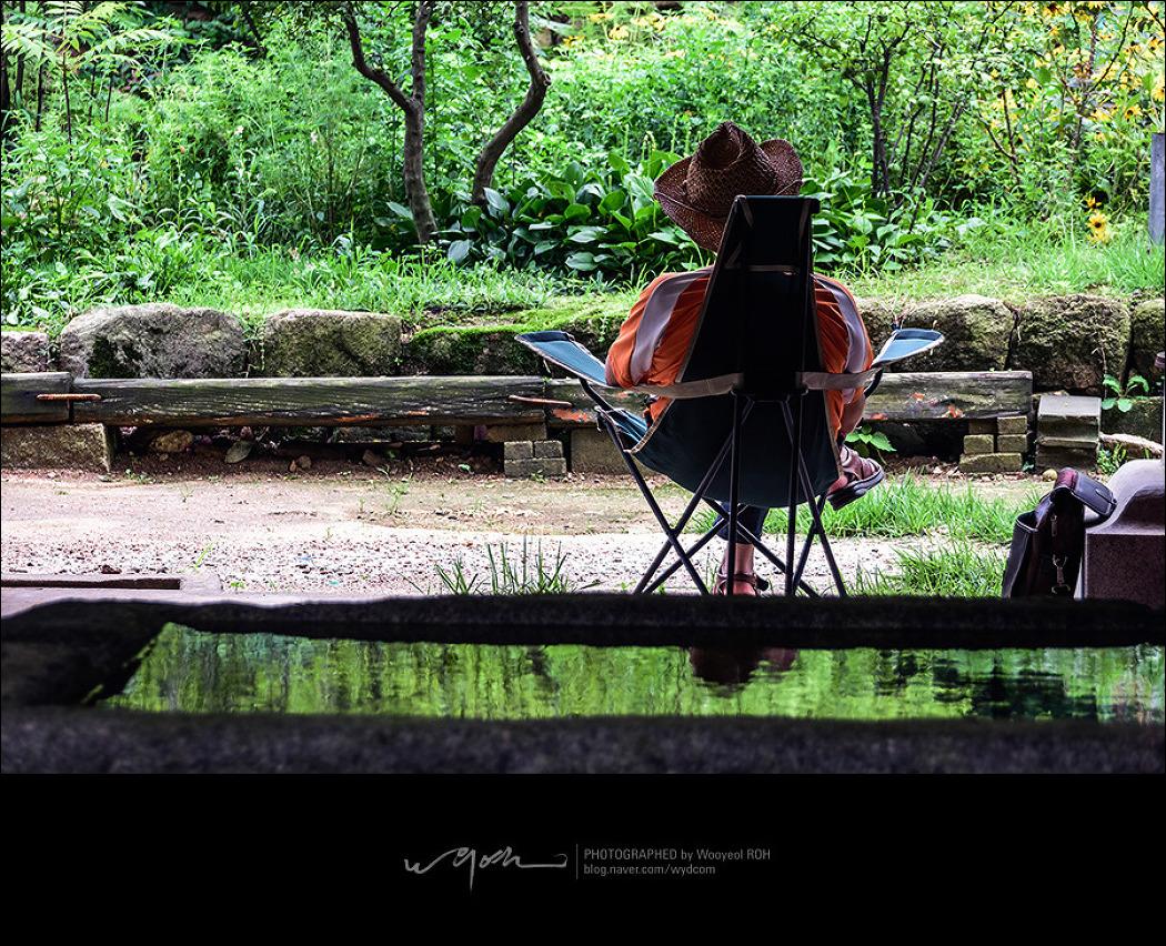 여름날의 휴식