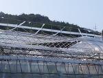 태풍 볼라벤이 휩쓸고 지나간 흔적들(0828)