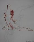 nude sketch - woman