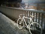 올해 첫 자전거 출근