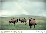 [몽골, 홉스골] 광각렌즈 필참!! 아시아에서 두번째로 큰 호수에 가다