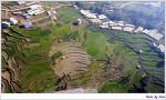 네팔 랑탕트레킹 7차(2016.12.16)