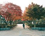 한밭수목원, 이응노 미술관