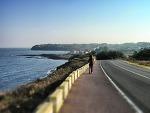 타임랩스로 한눈에 보는 제주올레길 16코스 | 제주올레걷기축제