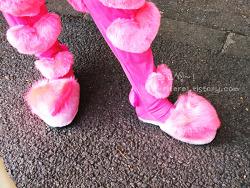 하라주쿠의 핑크맨, 라브군~