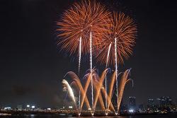 서울불꽃축제 2011, 밤하늘에 핀 꽃