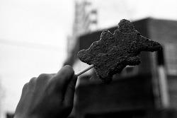 [사진]흑백감성