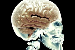 청력이 약해지면 뇌 크기가 줄어든다는 연구결과, 그럼 그 다음단계는?