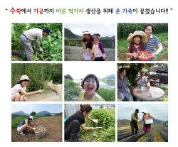 [농가소개] 영월 늘푸른농가를 소개합니다.