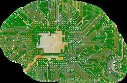 컴퓨터게임으로 지능(IQ) 높이기