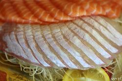 광어와 도다리회, 남보다 맛있게 먹는 방법(광어회 부위 구별법)