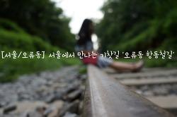 [서울/오류동] 서울에서 만나는 기찻길 '오류동 항동철길'