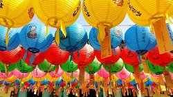 불기 2561년 부처님 오신날 봉축 법요식