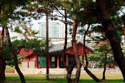 조선 제11대 중종의 능인 정릉