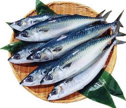 치매예방, 등푸른 생선에서 DHA 섭취로 예방하자