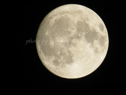 보름달.!!! .. 소원 제대로 빌어야 겠다..