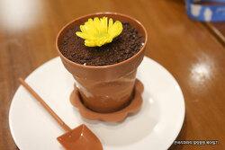 봄나들이에서 만난 아이들 호기심을 자극했던 화분케이크~!