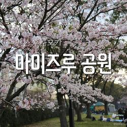 후쿠오카 여행 #33 마이즈루 공원 (舞鶴公園) - 후쿠오카성터