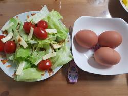 저녁마다 먹는 풀떼기와 닭알;;;