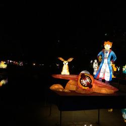 중앙공원 로봇문화 등불축제