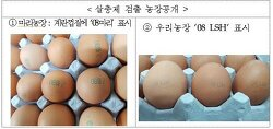 살충제 계란 먹어도 된다?
