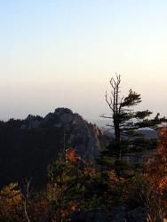 오색-천불동계곡_20081003