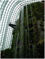 Singapore #09 - 가든스 바이 더 베이. 클라우드 포레스트 ①