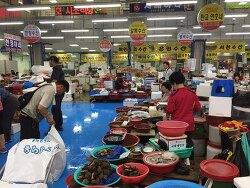 갓 잡은 자연산 소라 - 껍질이 꺼먹꺼먹해요. 서천특화시장 어은수산