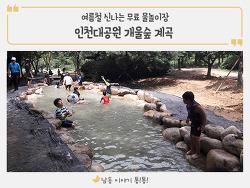 여름휴가 갈만한 곳! 인천대공원 관모산 개울숲 놀러오세요~