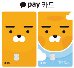 카카오페이 카드 혜택과 이용내역 공개
