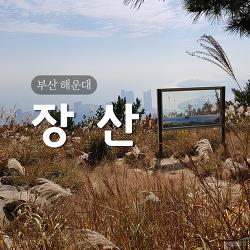 [부산 해운대] 장산
