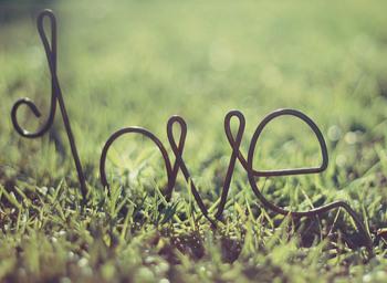 연애를 포기하면, 삶이 풍요로워질까?