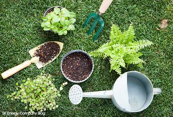 플라스틱으로부터 지구를 지키자! 친환경 바이오플라스틱