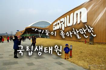 아이들이 좋아할만한 '서천 국립 생태원' 방문기 - 1
