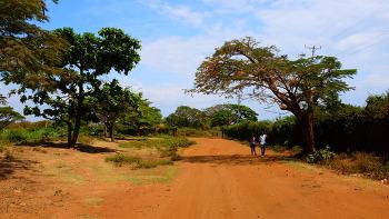 KISUMU, KENYA ( 키수무, 케냐)