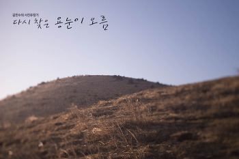 김민수의 사진유랑기 – 다시 찾은 용눈이 오름