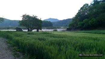 [배스낚시 2017년05월초-충북 옥천 대청호 환평리]멋진 대청호의 물안개