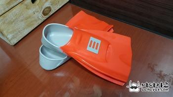 수영 추천 장비 오리발 숏핀 구매