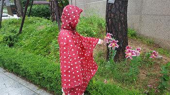 독일 라이젠탈 판초우의 우산 대신 써본 느낌