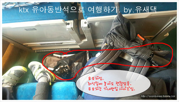 ktx 유아동반석으로 여행하기~앉는걸 포기해야 할 것이니~