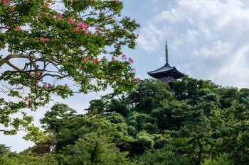 [요코하마] 산케이엔(三溪園)
