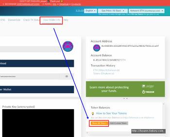 마이이더월렛 커스텀 토큰 추가 방법(브라마OS 예시), add custom token