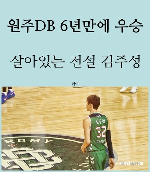 원주DB 농구 우승의 주역 김주성, DB손해보험 다이렉트 이벤트