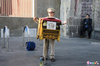 [멕시코] 거리의 연주