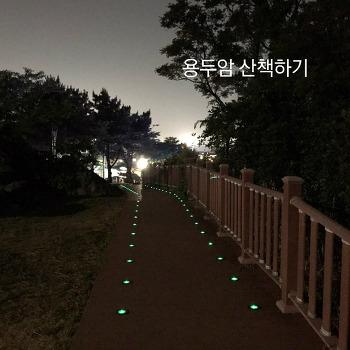 제주 야간명소인 용두암 산책하기