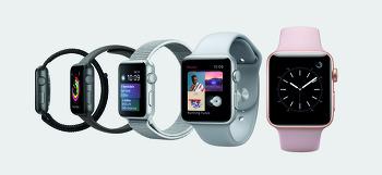 완전체가 갖고 싶어요 : 애플 워치 시리즈 3 사용기