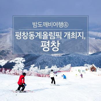 밤도깨비여행⑤ 평창동계올림픽 개최지, 평창