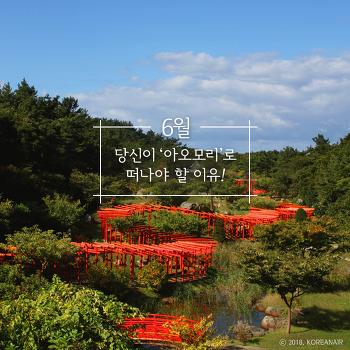 6월, '일본 아오모리'로 떠나야 할 이유!