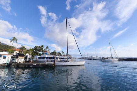 하와이 여행 마우이섬 꼭 가봐야 할 3곳은