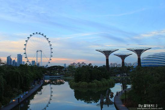 [싱가폴여행] 가든스바이더베이 & 싱가포르 플라이어